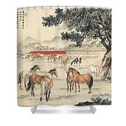 Ink Painting Horse Shower Curtain