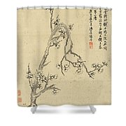 Ink Painting Plum Blossom Shower Curtain