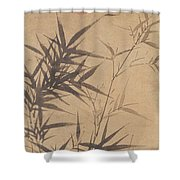 Ink Painting Stone Bamboo Shower Curtain