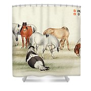 Ink Painting Stud Of Horses Shower Curtain