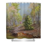 Inlet-spring, Mcdowell Shower Curtain
