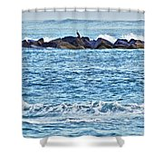 Inlet Waves Shower Curtain