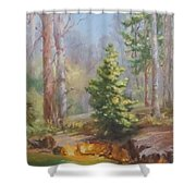 Inlet,winter's End, Mcdowell Shower Curtain