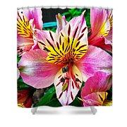Inner Flower Of A Goddess Shower Curtain