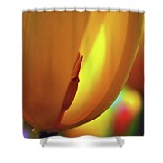 Inner Glow Shower Curtain