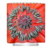 Inner Poppy Shower Curtain