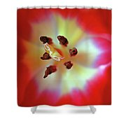 Inner Spirit Shower Curtain