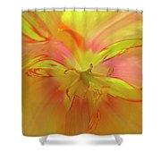 Inner Tulip Shower Curtain
