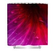 Inner Vanity Shower Curtain