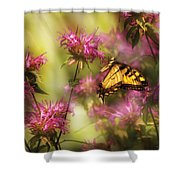 Insect - Butterfly - Golden Age  Shower Curtain