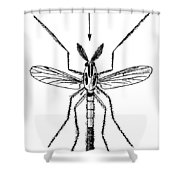 Insect: Midge Shower Curtain