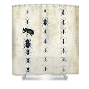 Insects - 1832 - 09 Shower Curtain