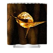 Inseparable Shower Curtain