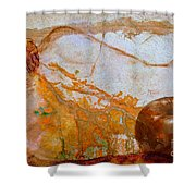 Insertion Or Extraction  Shower Curtain