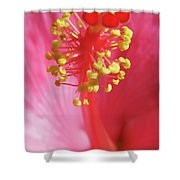 Inside The Hibiscus Shower Curtain