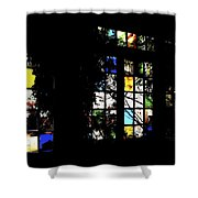 Insight Shower Curtain
