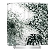 Insights From The Infinite Intelligence #655 Shower Curtain