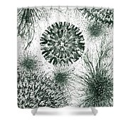 Insights From The Infinite Intelligence #657 Shower Curtain