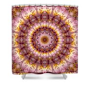 Inspiration Shower Curtain by Bell And Todd