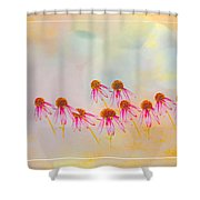 Inspiration Of Spring Shower Curtain