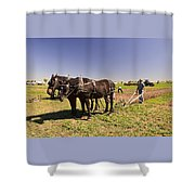 Instructing The Horses Four  Shower Curtain