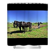 Instructing The Horses Two  Shower Curtain