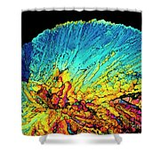 Insulin Crystals Light Micrograph Shower Curtain