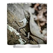 Insurance Salesman Shower Curtain