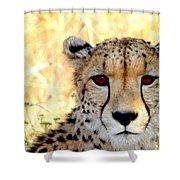 Intense Beauty Shower Curtain