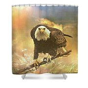 Intense Eagle Stare Shower Curtain