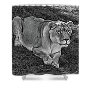 Intensity 3 Bw Shower Curtain