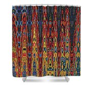 Interesting Abstract Shower Curtain