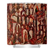 Interior Shower Curtain