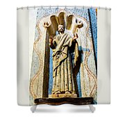 Interior Statue - San Xavier Mission - Tucson Arizona Shower Curtain
