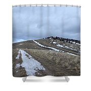 Intermittent Path Shower Curtain