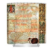 International Code Of Medical Ethics Shower Curtain by Science Source