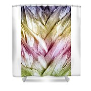 Interwoven Hues Shower Curtain