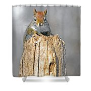 Intimate Look Shower Curtain