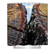 Intimately Separate Shower Curtain