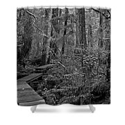 Into A Magical World Black And White Shower Curtain