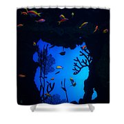 Into Another World Shower Curtain
