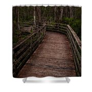 Into Audubon Corkscrew Swamp Sanctuary Shower Curtain