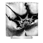 Into My Lair Shower Curtain