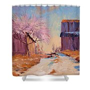 Into Spring Shower Curtain