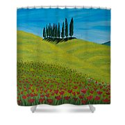 Into The Cypress Land Shower Curtain