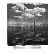 Into The Everglades Shower Curtain