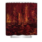 Into The Fire Shower Curtain
