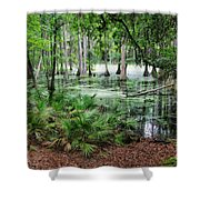 Into The Green Swamp Shower Curtain