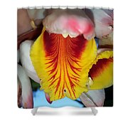Into The Jaws Too Shower Curtain