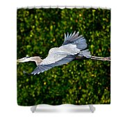 Into The Mangroves Shower Curtain